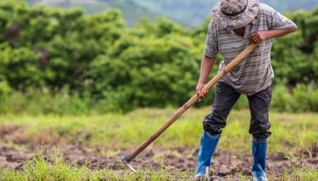 En Karlı Tarım Ürünleri 2021 En Çok Kazandıran Tarım Ürünleri
